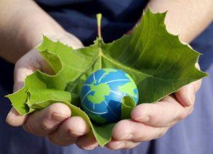 Sản phẩm bảo vệ môi trường, đạt chuẩn 5 sao