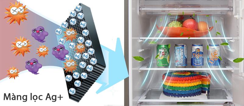 Đảm bảo thực phẩm luôn tươi ngon với tủ lạnh 165 lít SJ-174E-BS