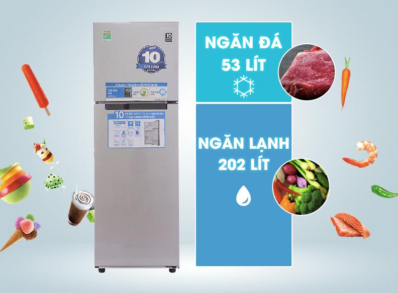 Kiểu dáng hiện đại, màu sắc hài hòa với tủ lạnh Samsung 255 lít RT25FARBDSA
