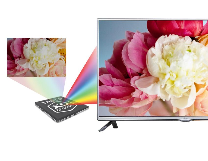 Công nghệ Triple XD Engine mang đến cho Tivi LG 42 inch 42LF550 hình ảnh hiển thị ở mức độ cao và màu sắc chân thực nhất