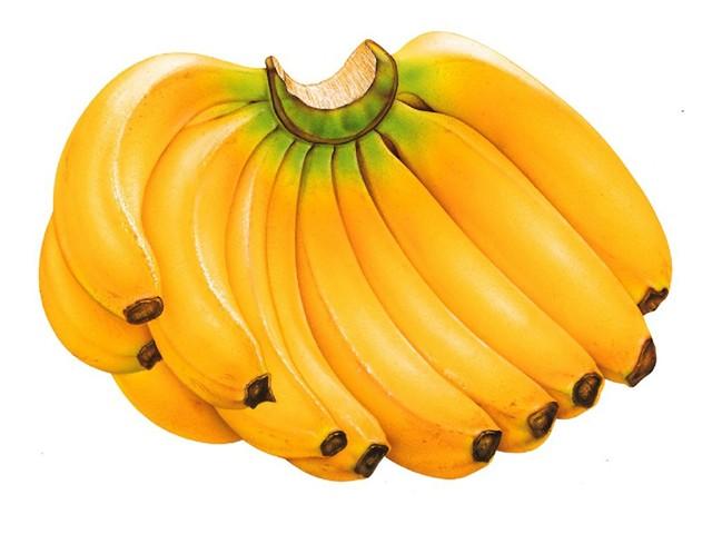 Các loại quả có hàm lượng nước cao dễ bị chấm đen, mềm nát khi lưu trữ lâu trong tủ lạnh