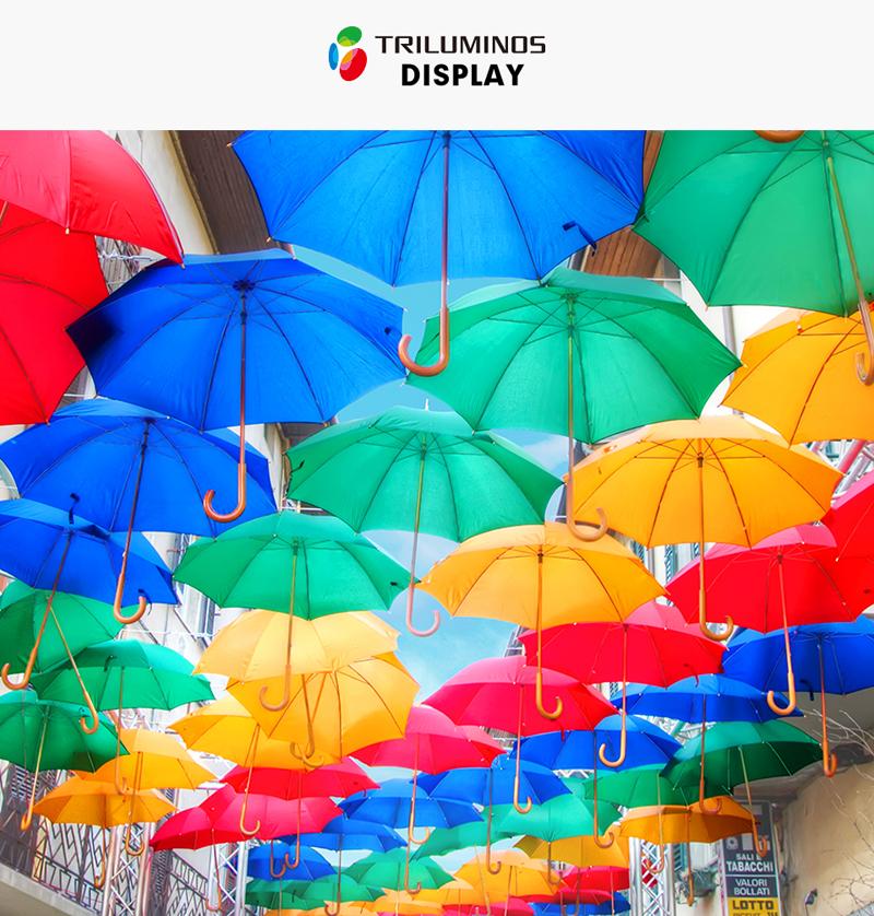 Smart Tivi Sony 65X9300E sở hữu màu sắc sống động như thật với TRILUMINOS ™ Display