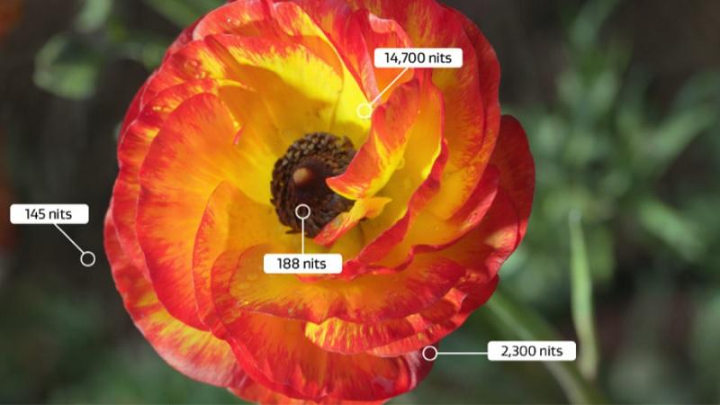 Màu sắc của hình ảnh tivi công nghệ HDR rực rỡ và chân thực
