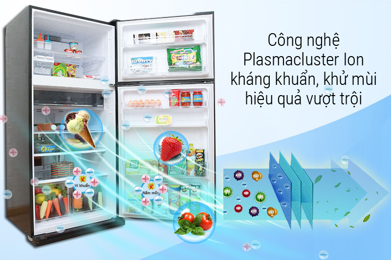 Chương trình Plasmacluster độc quyền