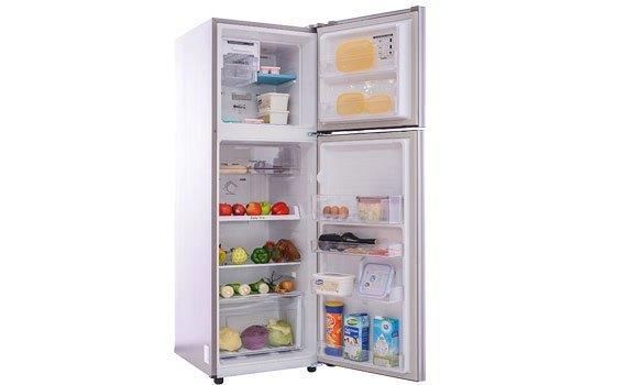 Sức chứa của tủ lạnh không hề nhỏ