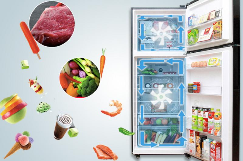 Luồng khí lạnh luôn tràn đầy trong không gian tủ