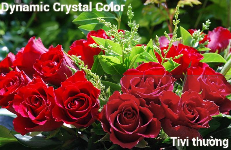 Công nghệ Dynamic Crystal Color trênSmart Tivi Samsung 4K 43 inch UA43NU7400