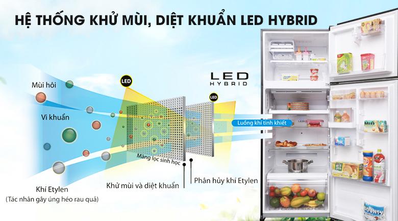 Công nghệ Hybrid Bio kết hợp tinh thể bạc Ag+ - Tủ lạnh Toshiba Inverter 409 lít GR-AG46VPDZ XK