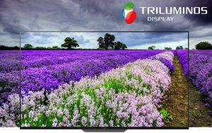 Công nghệ màn hình tiên tiến Triluminos trên Android Tivi Sony 4K 55 inch KD-55A8F