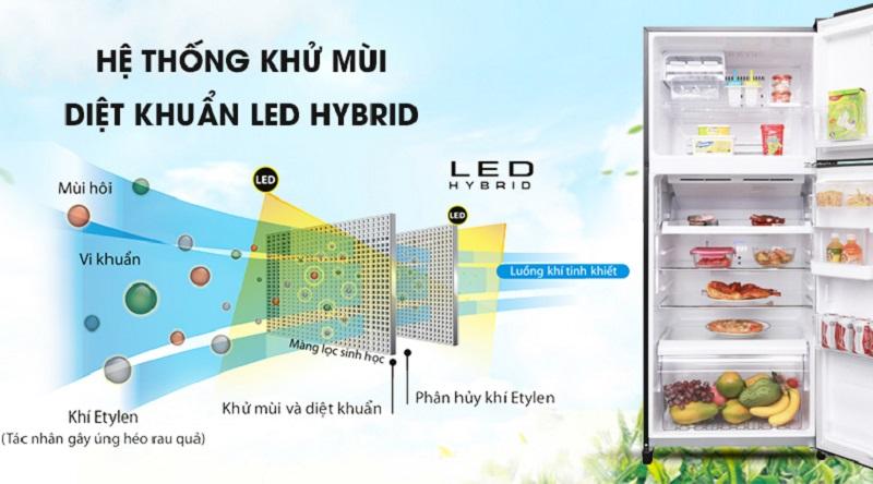 Khử mùi kháng khuẩn triệt để với hệ thống LED HYBRID - Tủ lạnh Toshiba Inverter 359 lít GR-AG41VPDZ XK1Tủ lạnh Toshiba Inverter 359 lít GR-AG41VPDZ XK1