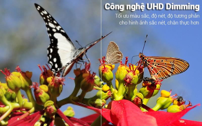 Công nghệ UHD Dimming Tivi Samsung 4K 50 inch UA50NU7400