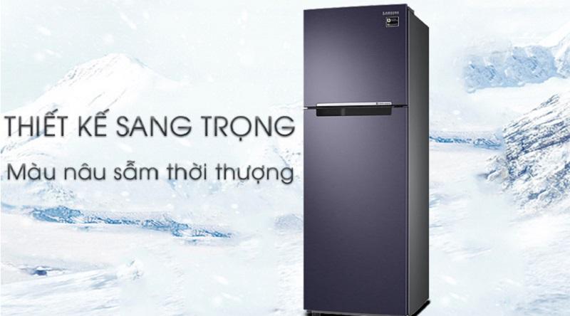 Tủ lạnh Samsung Inverter 256 lít RT25M4033UT/SV