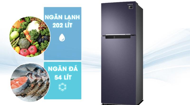 Dung tích tủ tới 256 lít thoải mái sử dụng - Tủ lạnh Samsung Inverter 256 lít RT25M4033UT/SV