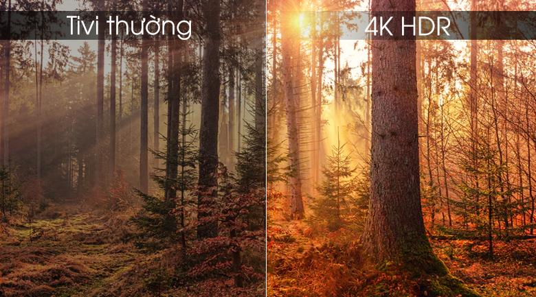 Hình ảnh chân thực, sắc nét nhờ công nghệ 4K HDR