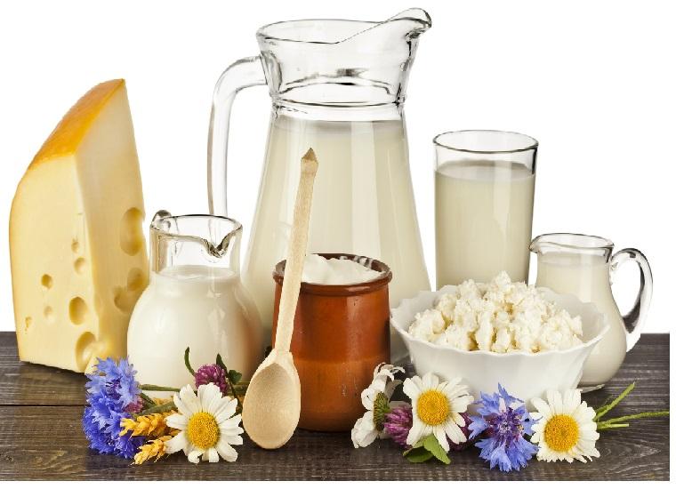 Bảo quản những thực phẩm làm từ sữa đúng cách