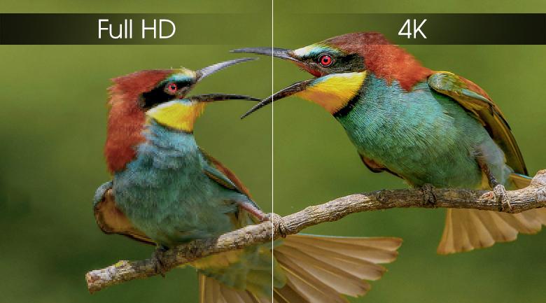 Android Tivi Sony 4K 43 inch KD-43X8000G - 4K